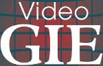 videogie_2016_logo_sm